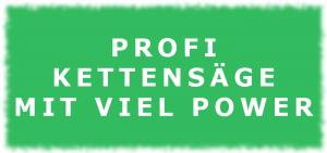 Profi Kettensäge